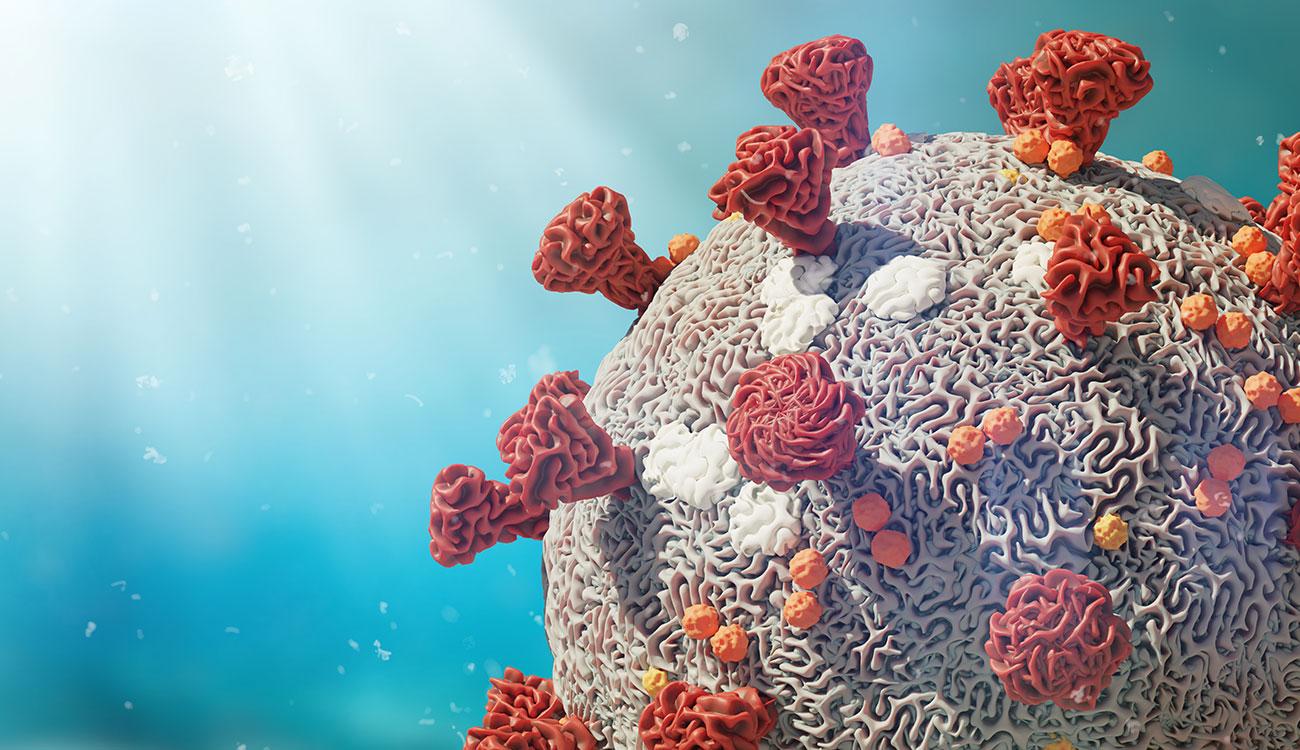 Come nasce e si trasmette un virus