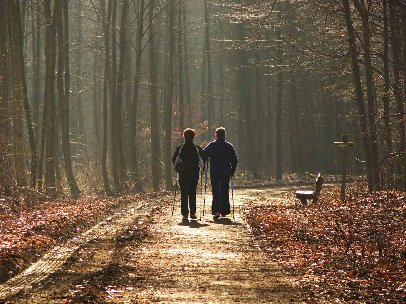 Una bella camminata