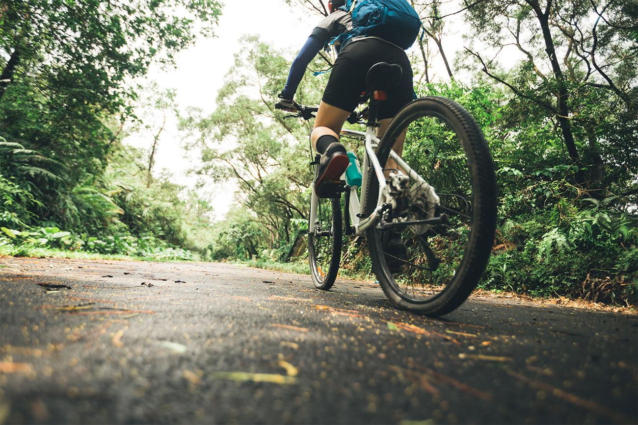 Vacanze aletrnative economiche e salutari in bicicletta