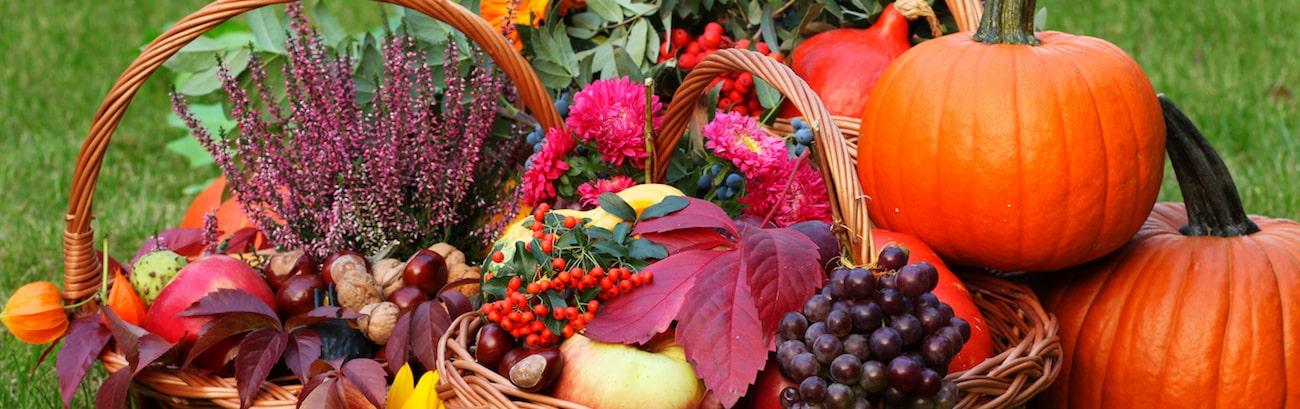 Frutta Ottobre