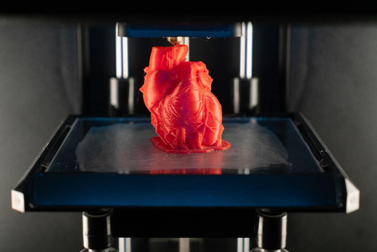 Stampa cuore in 3d